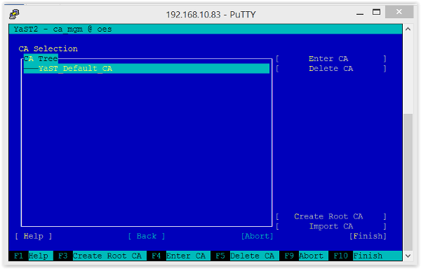 Figure 3:  CA on a SLES server