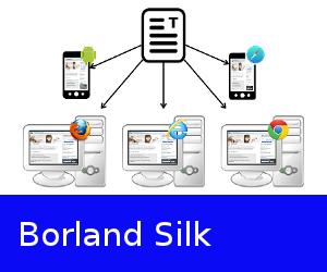 29-borland-silk