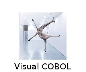 30-cobol-splash-300x250